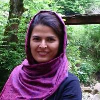 همکار و نویسنده گروه آسمان شب ایران، موسس آفاق راهبر آذربایجان
